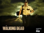 The-Walking-Dead-the-walking-dead-30371924-1600-1200