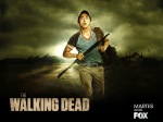 The-Walking-Dead-the-walking-dead-30371929-1600-1200