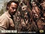 The-Walking-Dead-the-walking-dead-35648023-1600-1200