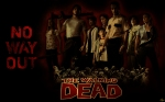 the_walking_dead_wallpaper_by_aycatanrikulu-d347e3l